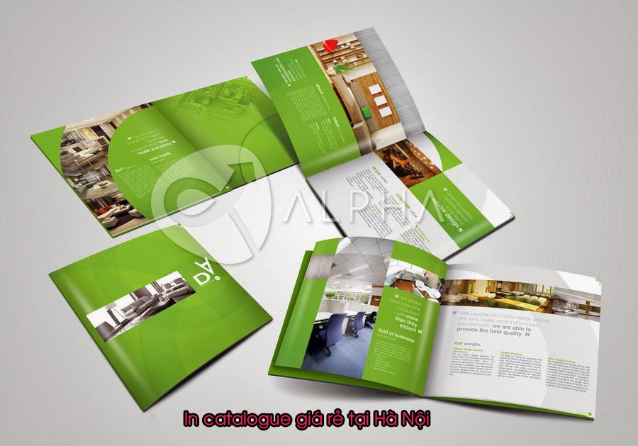 In catalogue tại Hà Nội